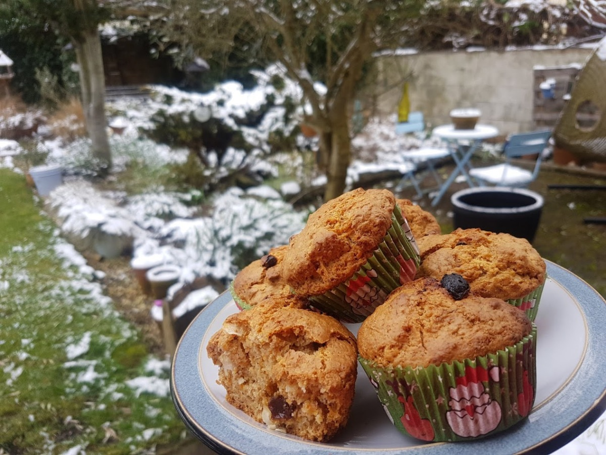 Carrot & CoconutMuffins